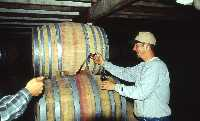 vinification in USA