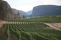 Wineries in British Columbia
